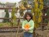 lilpumpkins07.jpg